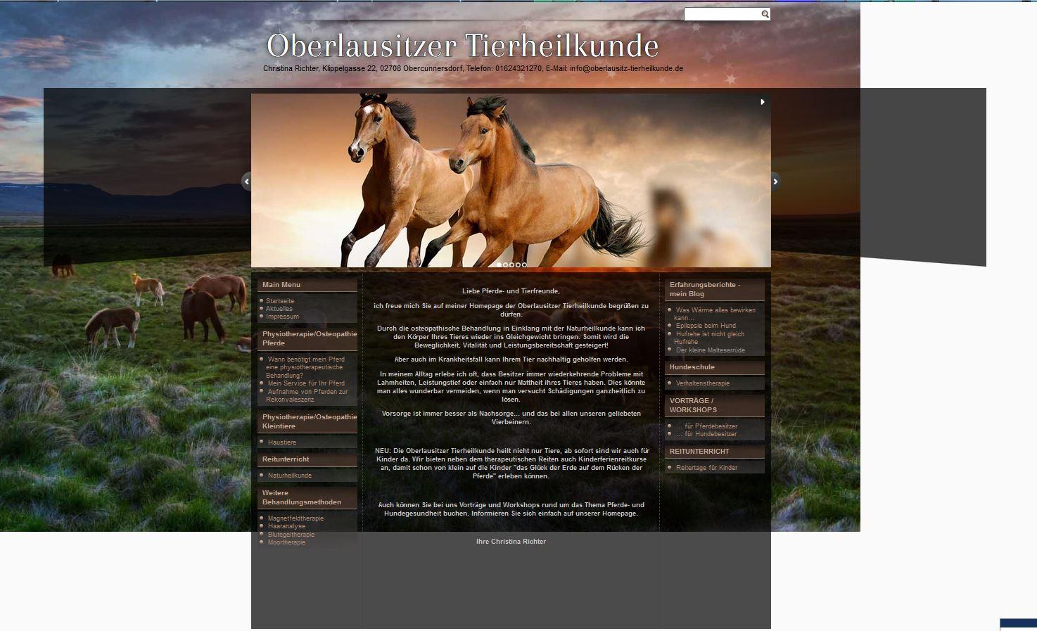 Oberlausitzer Pferdephysio.de